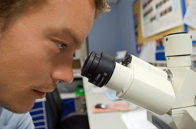 Forschung Embryologie - Blog Ja zum Leben Schweiz
