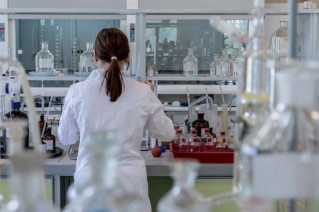 Stammzellenforschung - Blog Ja zum Leben Schweiz
